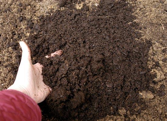 Toprak Nedir? Toprak Tipleri Nelerdir? Hakkında bilgi