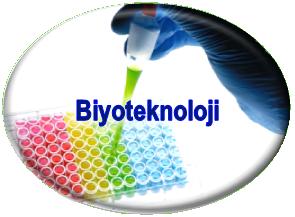 Biyoteknoloji Nedir? Biyoteknoloji ile ilgili bilgi