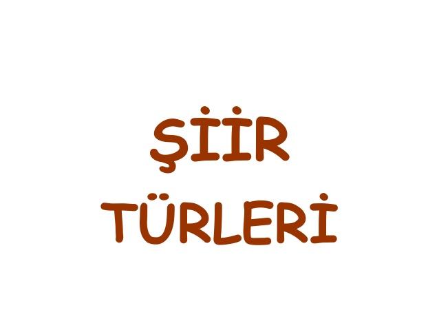 Türkçe'de Şiir Türleri Nelerdir? Şiir Türleri Hakkında Bilgi