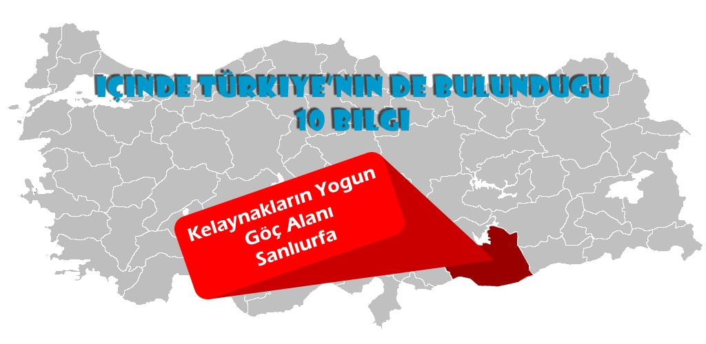İçinde Türkiye'nin de Bulunduğu 10 Bilgi